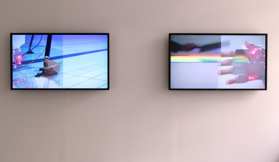 Anna Barham, Double Screen (not quite tonight jellylike), 2013